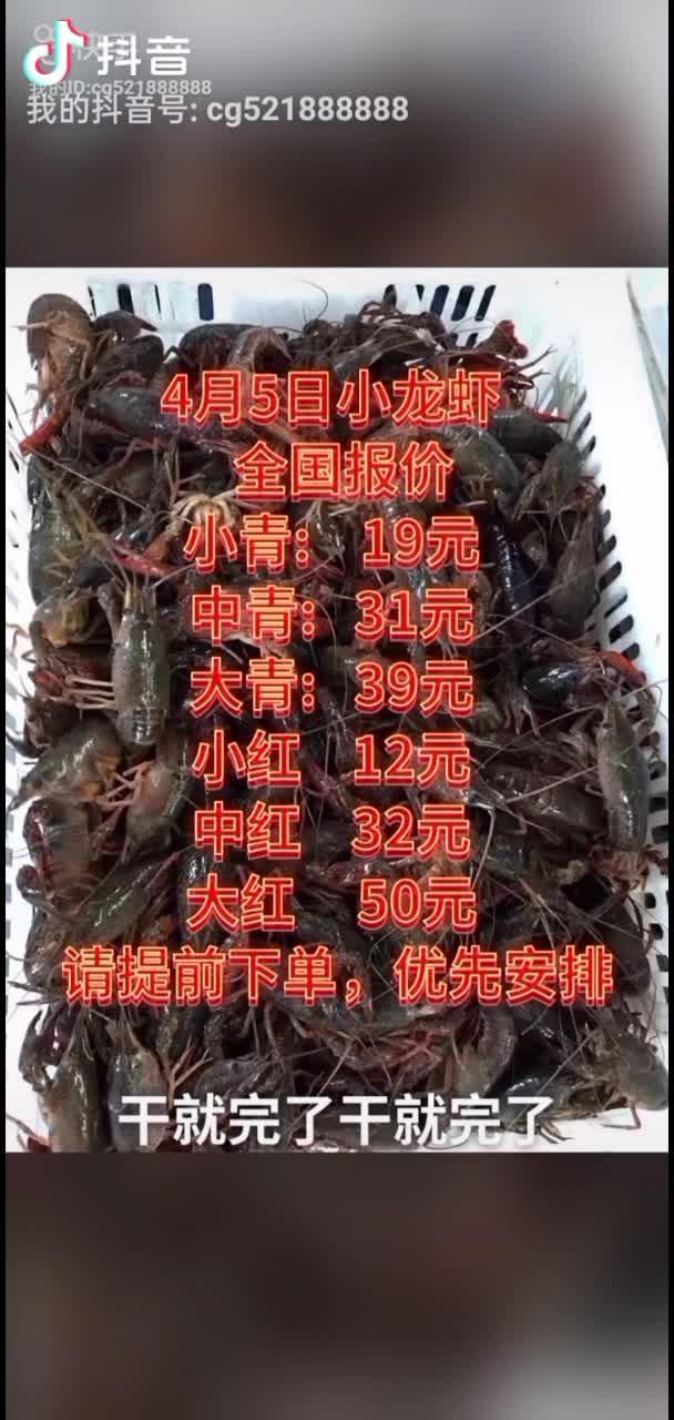 湖北潛江小龍蝦13707227475
