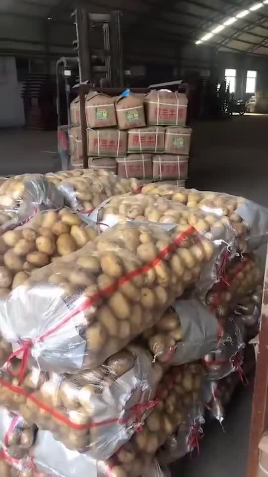 13563913907土豆/生姜/苹果产地常年供应