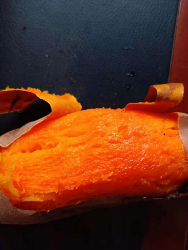 唐山煙薯25 商品薯 紅心 3兩以上,口感好,批發零售。
