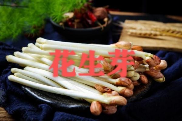 山东滨州豌豆苗,花生芽,小麦草,萝卜苗直供